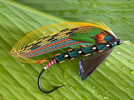 Guanacaste Fly Fishing Charters